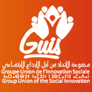 groupe-union-de-l-innovation-sociale-guis